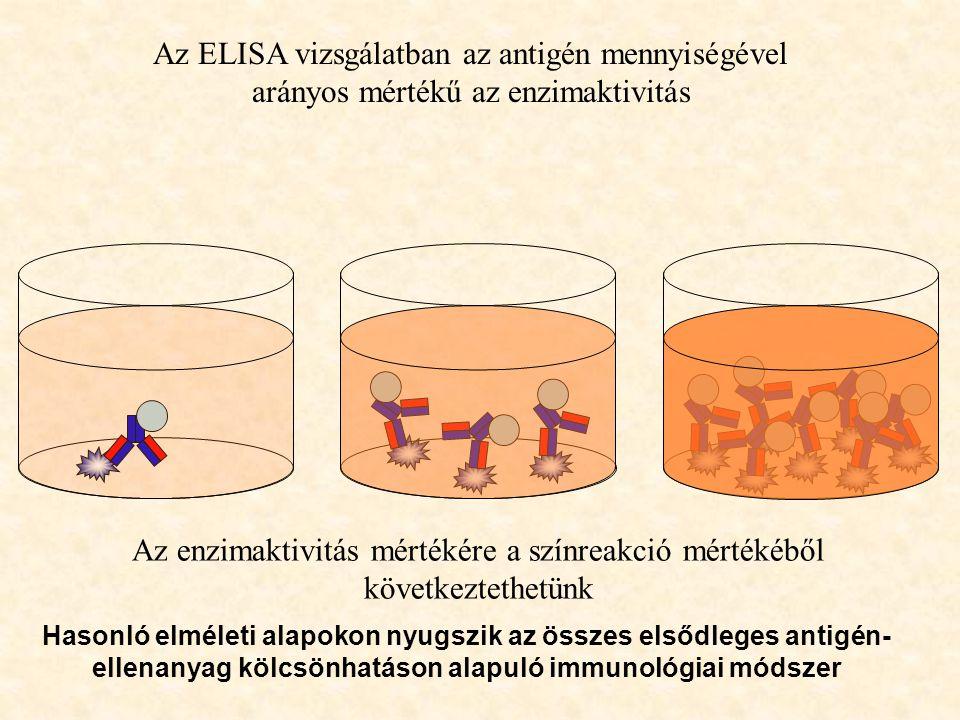 Az ELISA vizsgálatban az antigén mennyiségével arányos mértékű az enzimaktivitás Az enzimaktivitás mértékére a színreakció mértékéből következtethetün