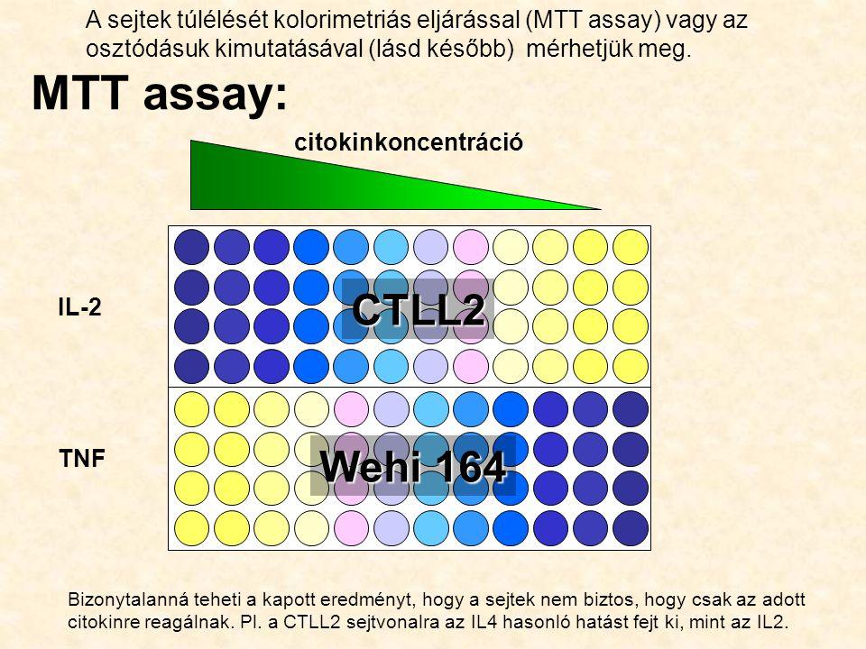 Bizonytalanná teheti a kapott eredményt, hogy a sejtek nem biztos, hogy csak az adott citokinre reagálnak. Pl. a CTLL2 sejtvonalra az IL4 hasonló hatá