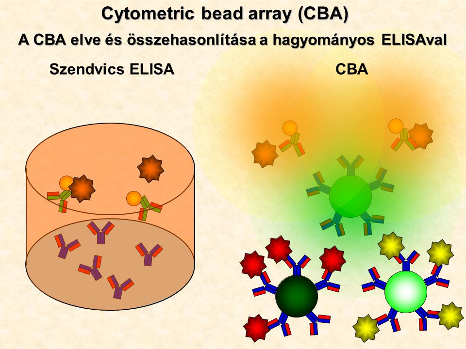 Szendvics ELISACBA Cytometric bead array (CBA)