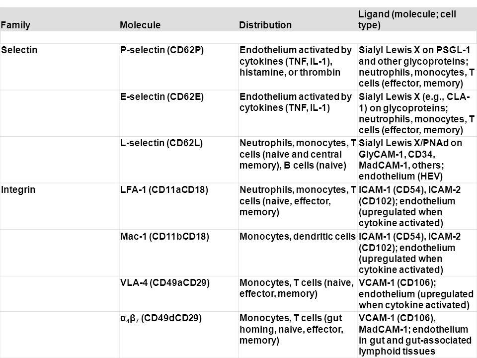 Table 3-1. Major Leukocyte-Endothelial Adhesion Molecules FamilyMoleculeDistribution Ligand (molecule; cell type) SelectinP-selectin (CD62P)Endotheliu