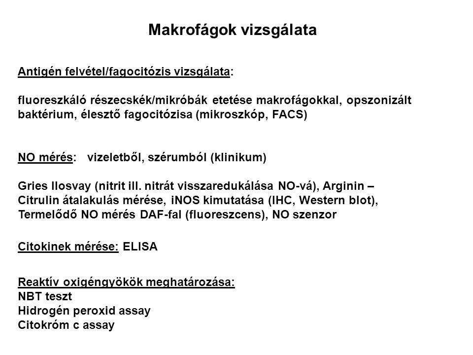 NO mérés: vizeletből, szérumból (klinikum) Gries Ilosvay (nitrit ill. nitrát visszaredukálása NO-vá), Arginin – Citrulin átalakulás mérése, iNOS kimut