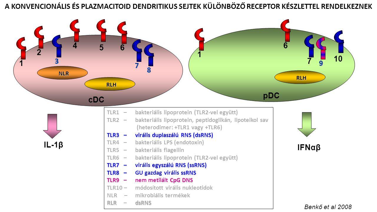 cDC pDC 5 8 7 3 7 10 9 TLR1 – bakteriális lipoprotein (TLR2-vel együtt) TLR2 –bakteriális lipoprotein, peptidoglikán, lipoteikol sav (heterodimer: +TL