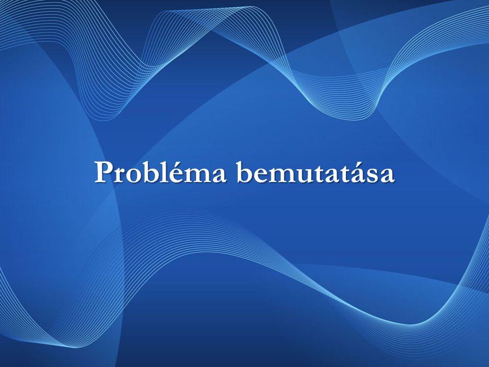 Probléma bemutatása