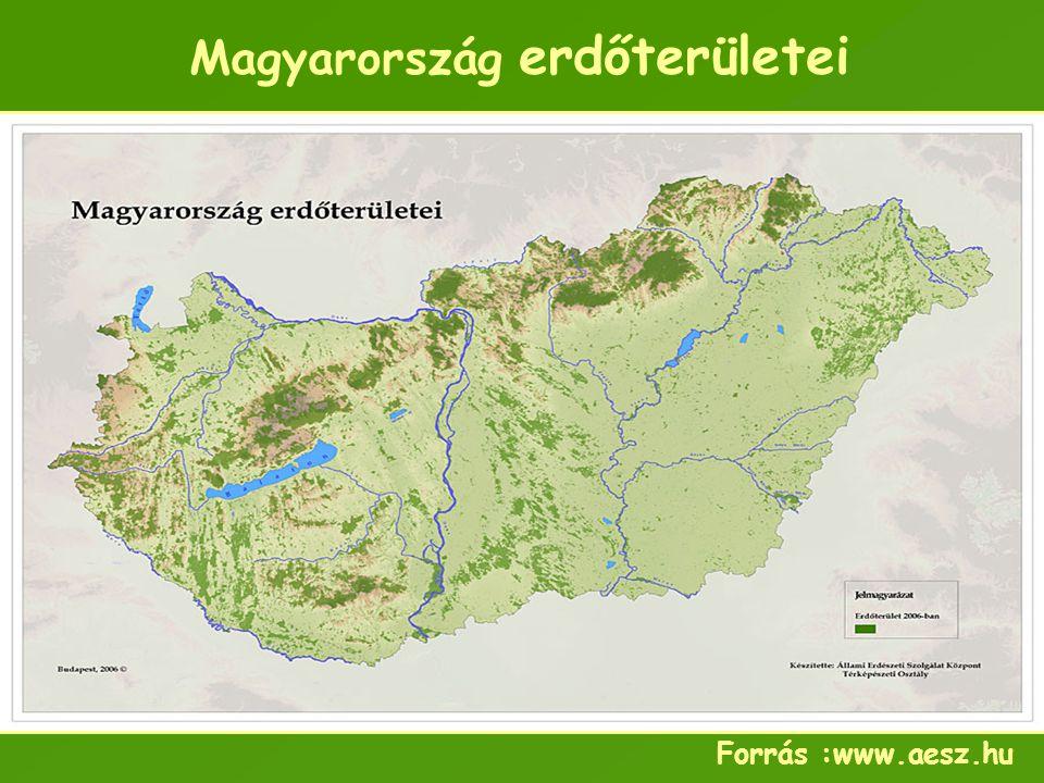 Magyarország erdőterületei Forrás :www.aesz.hu