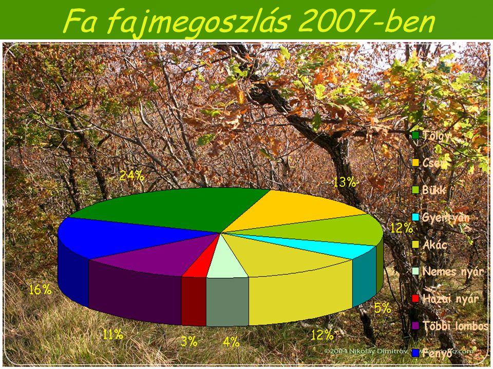 Fa fajmegoszlás 2007-ben