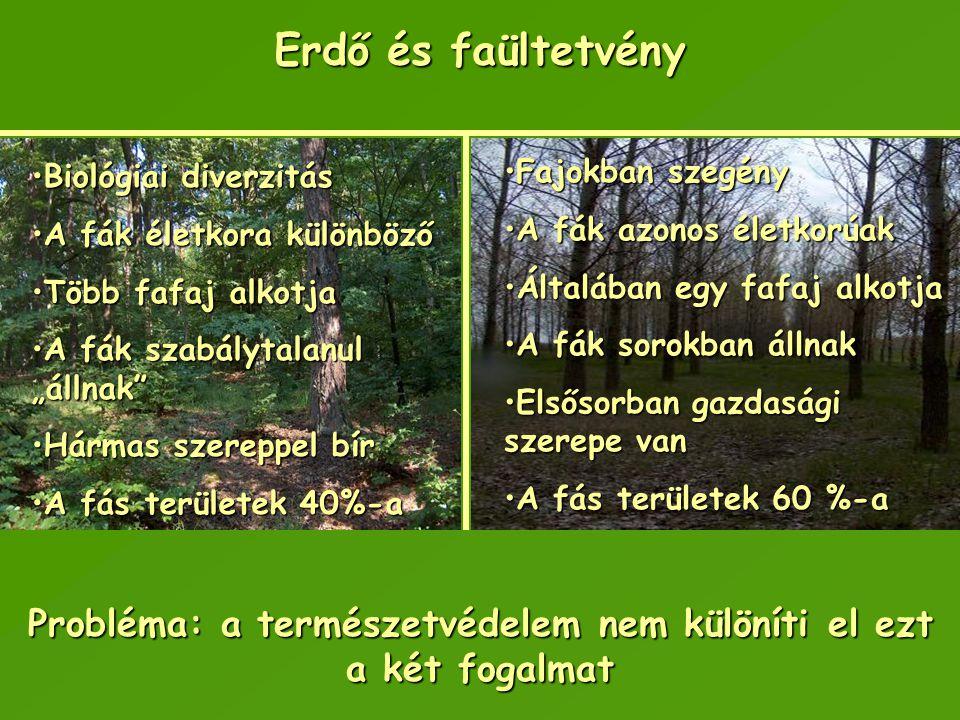 Erdő és faültetvény Biológiai diverzitásBiológiai diverzitás A fák életkora különbözőA fák életkora különböző Több fafaj alkotjaTöbb fafaj alkotja A f