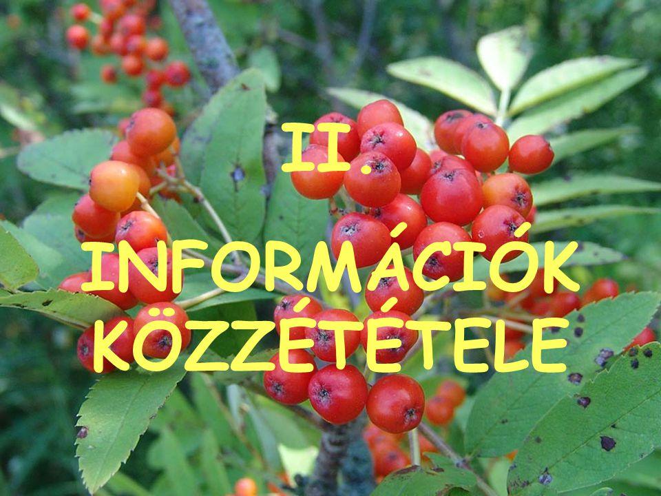 II. INFORMÁCIÓK KÖZZÉTÉTELE