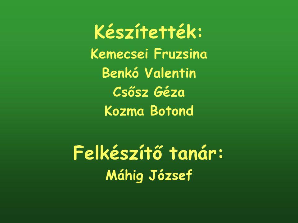 Készítették: Kemecsei Fruzsina Benkó Valentin Csősz Géza Kozma Botond Felkészítő tanár: Máhig József