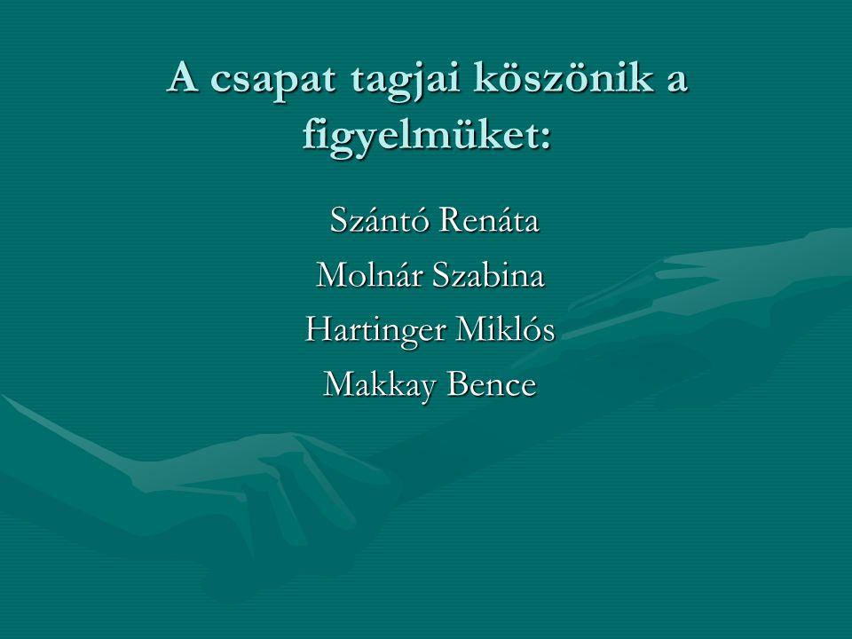 A csapat tagjai köszönik a figyelmüket: Szántó Renáta Szántó Renáta Molnár Szabina Hartinger Miklós Makkay Bence