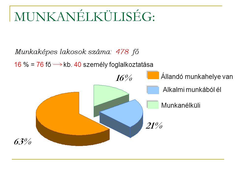 MUNKANÉLKÜLISÉG: Állandó munkahelye van Alkalmi munkából él Munkanélküli 16 % = 76 fő kb. 40 személy foglalkoztatása