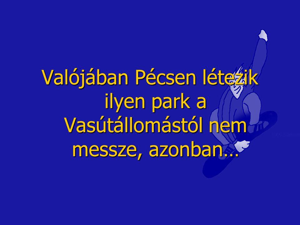 Valójában Pécsen létezik ilyen park a Vasútállomástól nem messze, azonban…