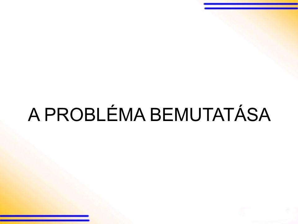 A PROBLÉMA BEMUTATÁSA