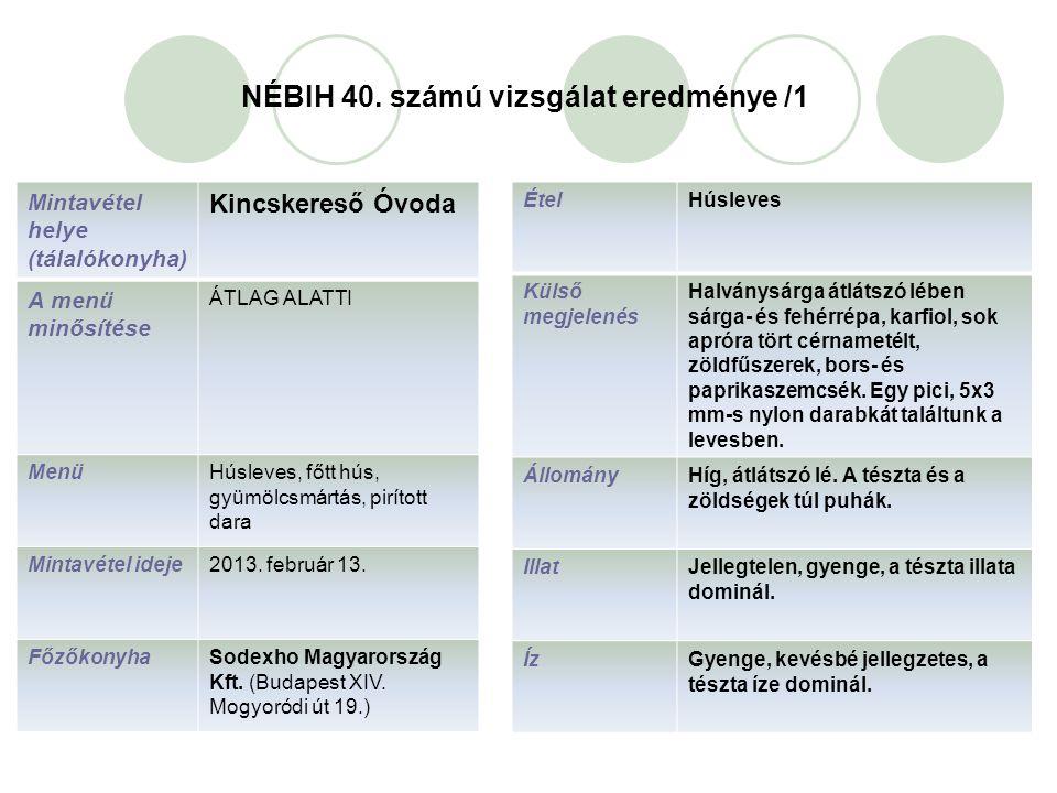 NÉBIH 40. számú vizsgálat eredménye /1 ÉtelHúsleves Külső megjelenés Halványsárga átlátszó lében sárga- és fehérrépa, karfiol, sok apróra tört cérname