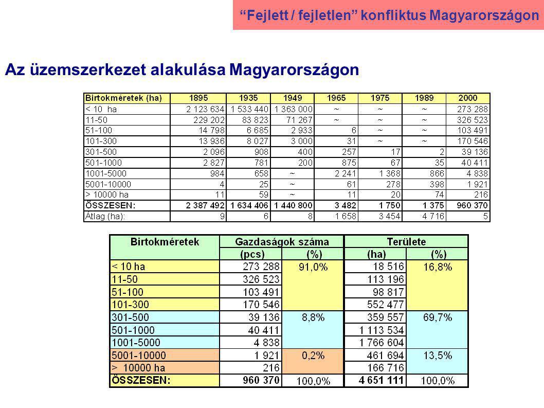 Az üzemszerkezet alakulása Magyarországon Fejlett / fejletlen konfliktus Magyarországon
