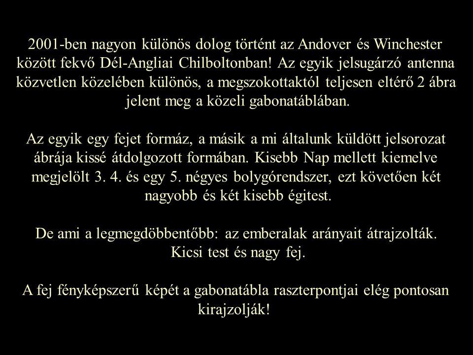 2001-ben nagyon különös dolog történt az Andover és Winchester között fekvő Dél-Angliai Chilboltonban! Az egyik jelsugárzó antenna közvetlen közelében