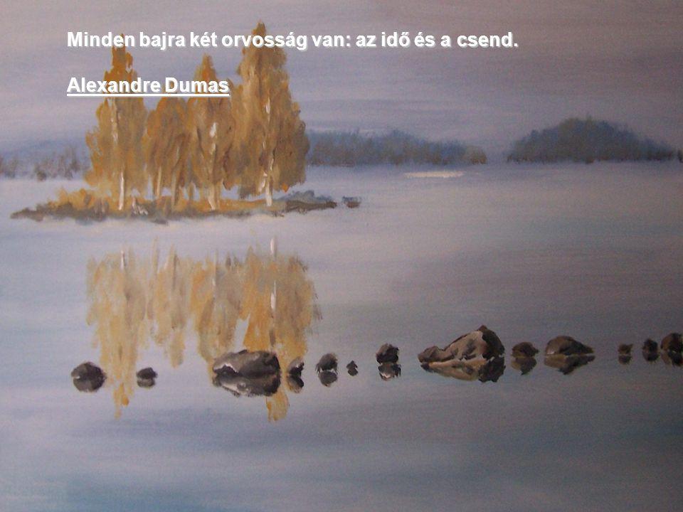 Minden bajra két orvosság van: az idő és a csend. Alexandre Dumas