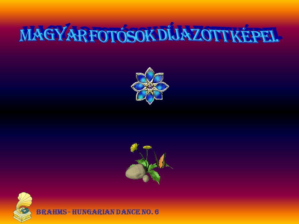 Brahms - Hungarian dance no. 6