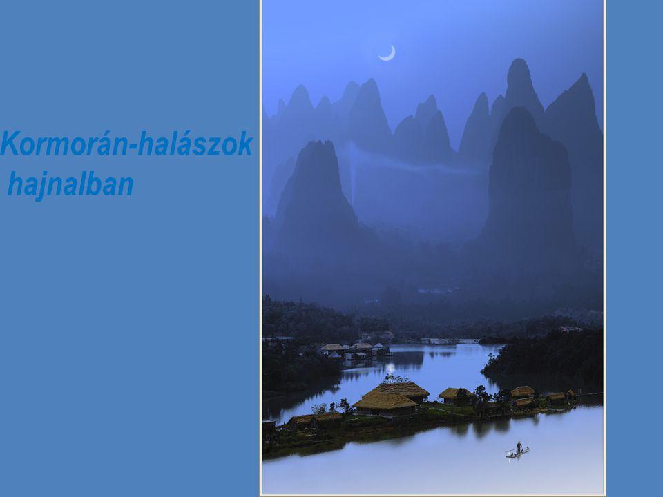 Álmodozás a Tigr is-forrásnál, Hangzhou