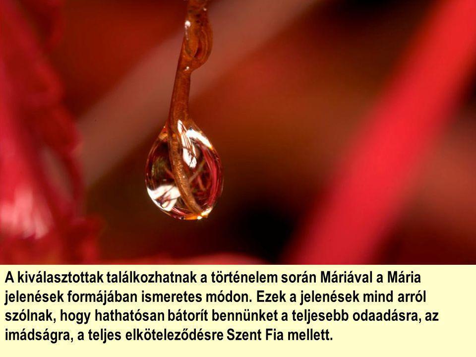 Mária teremtmény, az idősebb nővér, aki előttünk jár és hív, biztat, tanít és bátorít. Szent Fiához akar édesgetni mindenkit.