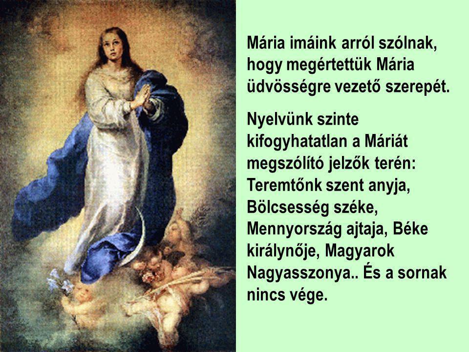 A kiválasztottak találkozhatnak a történelem során Máriával a Mária jelenések formájában ismeretes módon. Ezek a jelenések mind arról szólnak, hogy ha