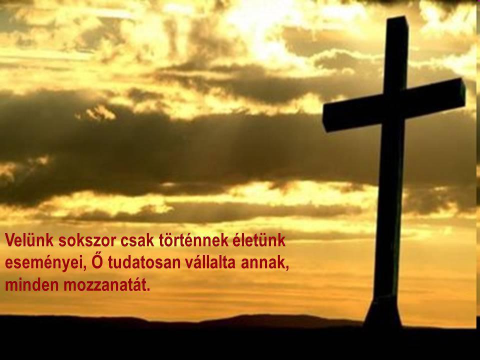 Húsvétra készülve: előttünk áll Jézus keresztje, aki szeretetből jött közénk és lett egy közülünk, testet öltve és végig járva azt a küzdelmes utat, m