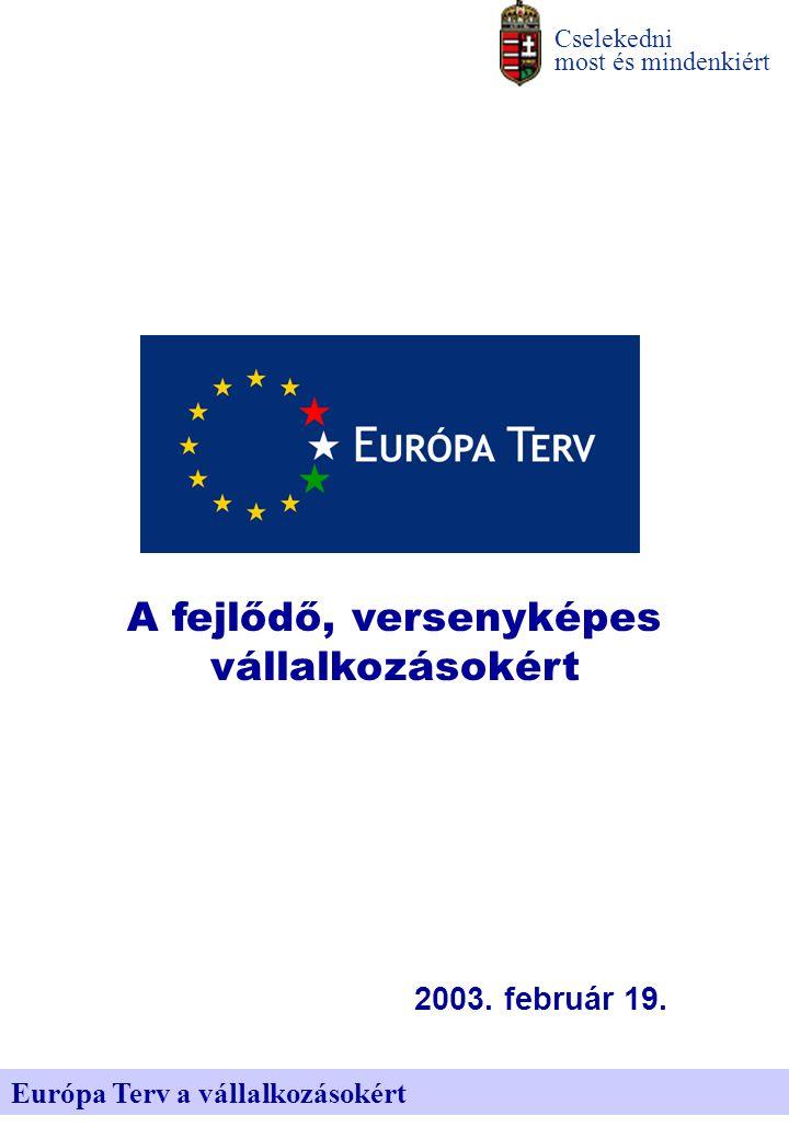 Európa Terv a vállalkozásokért Cselekedni most és mindenkiért 2003.