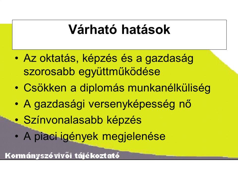 ˝ Pályázatok 2007.