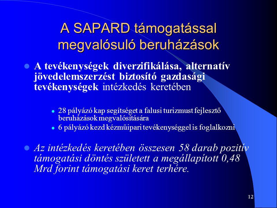 12 A SAPARD támogatással megvalósuló beruházások A tevékenységek diverzifikálása, alternatív jövedelemszerzést biztosító gazdasági tevékenységek intéz