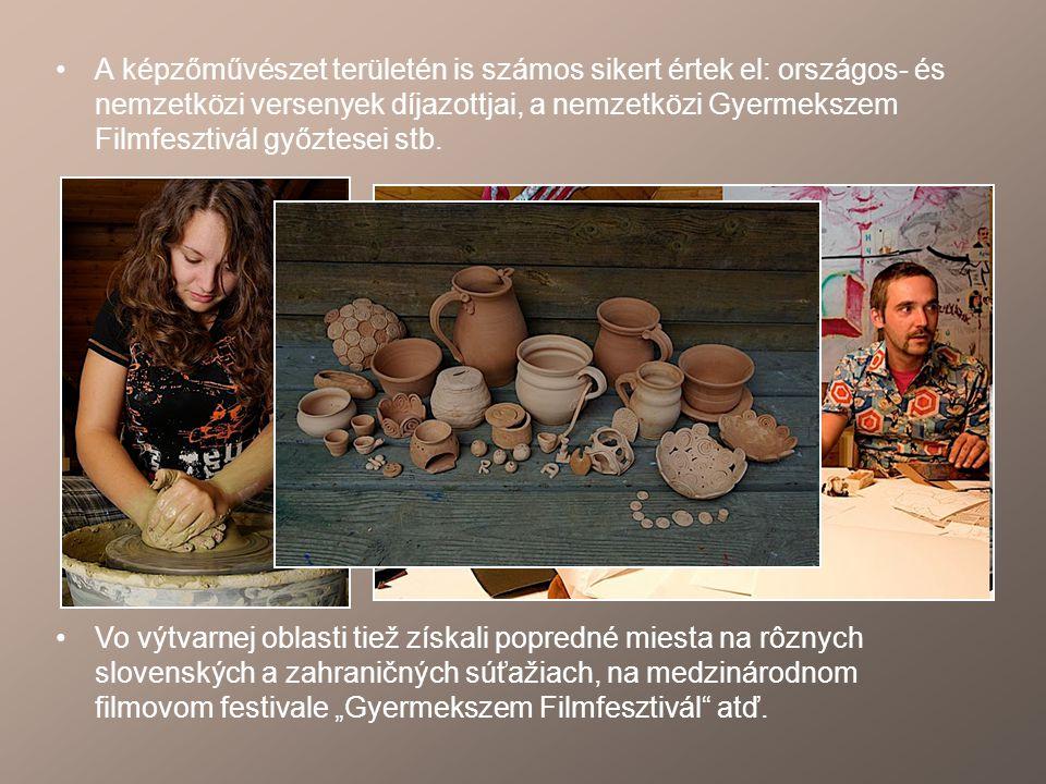 A képzőművészet területén is számos sikert értek el: országos- és nemzetközi versenyek díjazottjai, a nemzetközi Gyermekszem Filmfesztivál győztesei stb.
