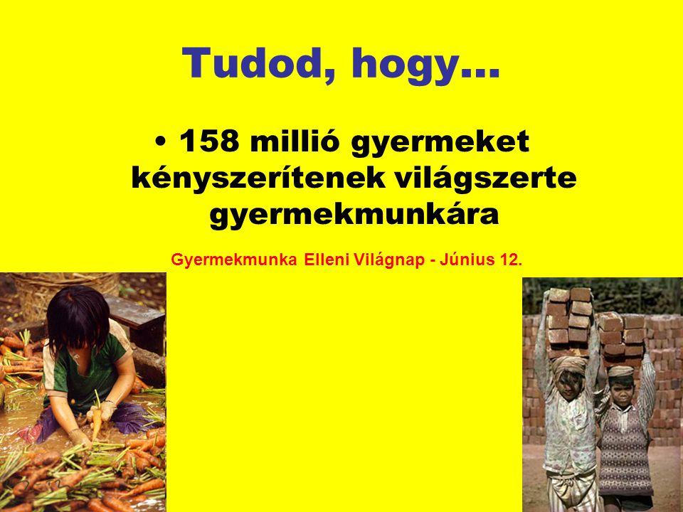 Tudod, hogy… 158 millió gyermeket kényszerítenek világszerte gyermekmunkára Gyermekmunka Elleni Világnap - Június 12.