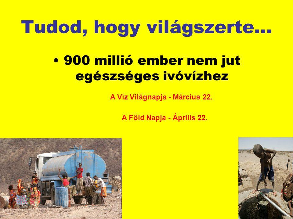 Tudod, hogy világszerte… 900 millió ember nem jut egészséges ivóvízhez A Víz Világnapja - Március 22. A Föld Napja - Április 22.