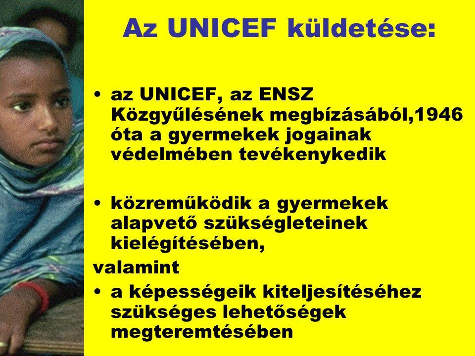 Az UNICEF küldetése: az UNICEF, az ENSZ Közgyűlésének megbízásából,1946 óta a gyermekek jogainak védelmében tevékenykedik közreműködik a gyermekek ala