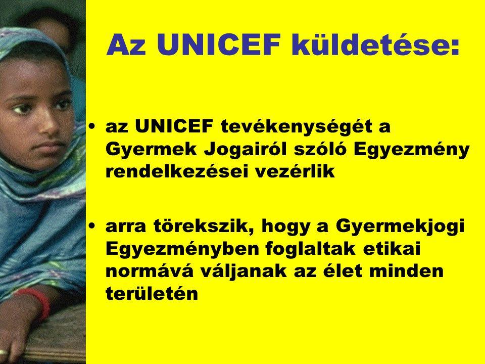 Az UNICEF küldetése: az UNICEF tevékenységét a Gyermek Jogairól szóló Egyezmény rendelkezései vezérlik arra törekszik, hogy a Gyermekjogi Egyezményben