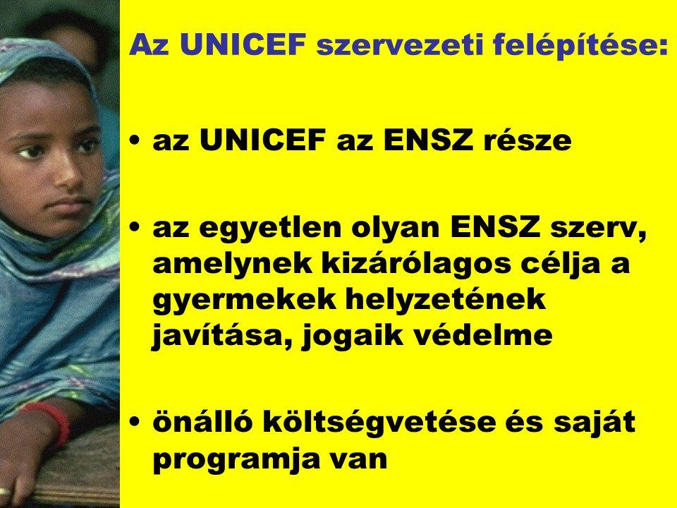 Az UNICEF szervezeti felépítése: az UNICEF az ENSZ része az egyetlen olyan ENSZ szerv, amelynek kizárólagos célja a gyermekek helyzetének javítása, jo
