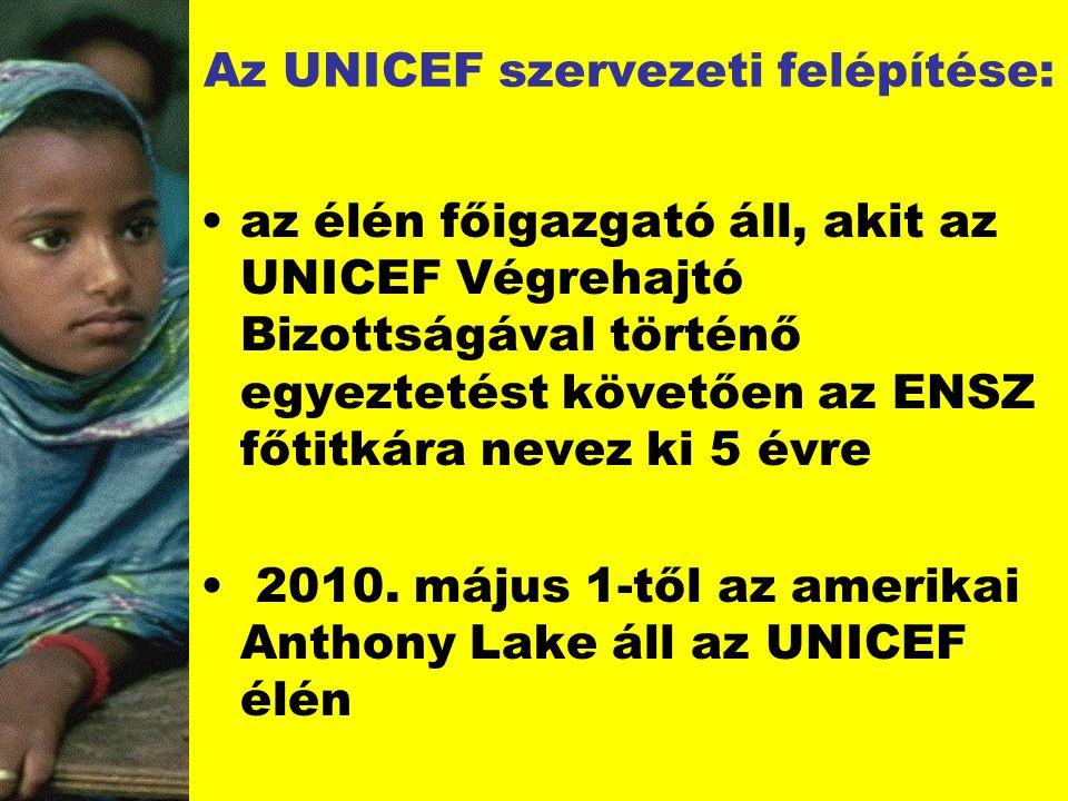 Az UNICEF szervezeti felépítése: az élén főigazgató áll, akit az UNICEF Végrehajtó Bizottságával történő egyeztetést követően az ENSZ főtitkára nevez