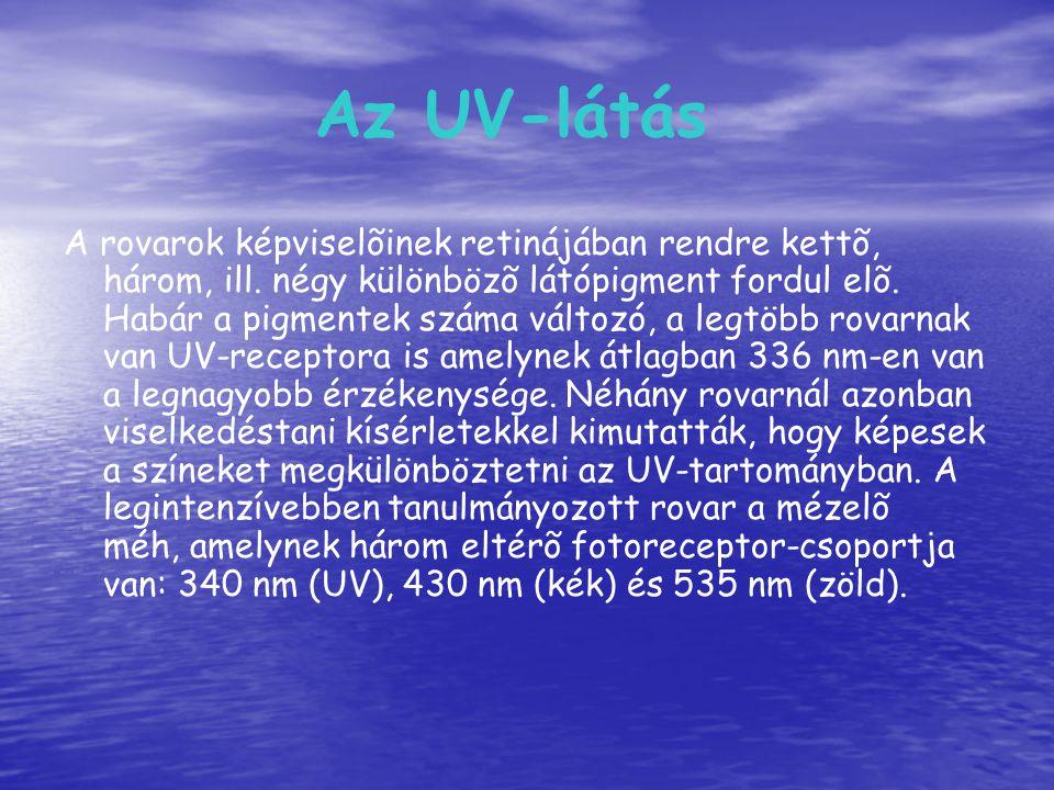 Az UV-látás A rovarok képviselõinek retinájában rendre kettõ, három, ill. négy különbözõ látópigment fordul elõ. Habár a pigmentek száma változó, a le