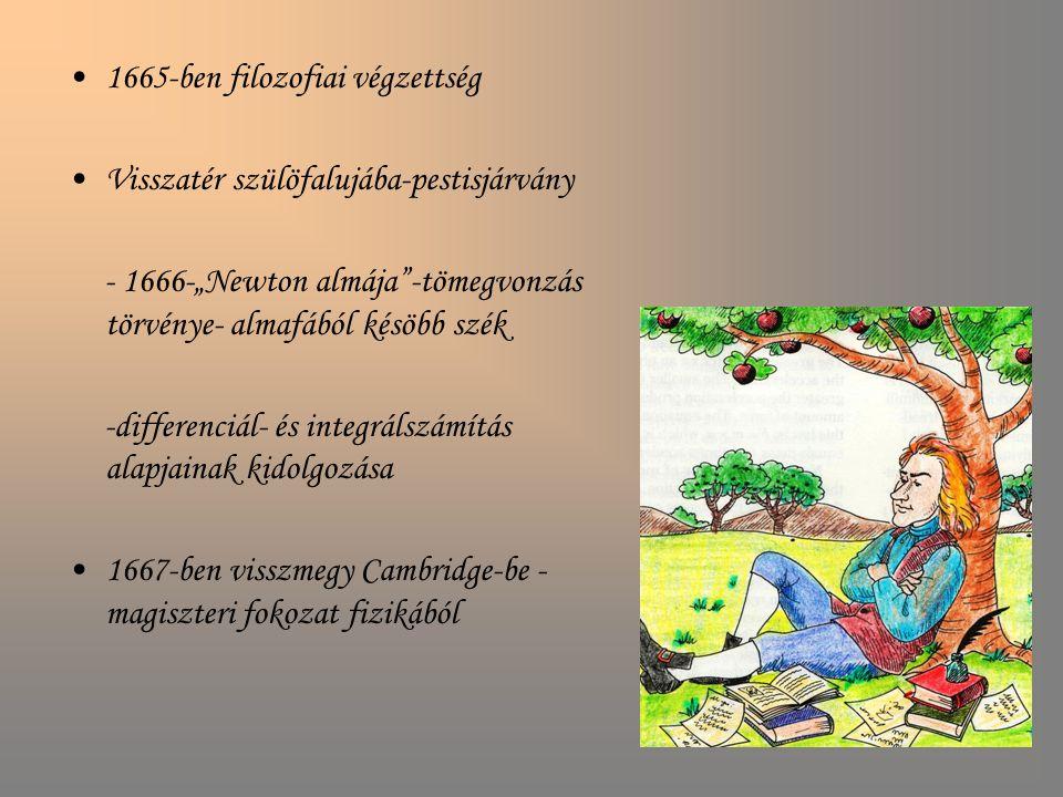 """1665-ben filozofiai végzettség Visszatér szülöfalujába-pestisjárvány - 1666-""""Newton almája""""-tömegvonzás törvénye- almafából késöbb szék -differenciál-"""
