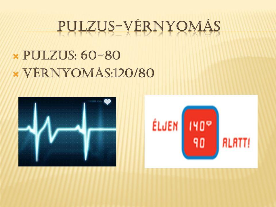  Pulzus: 60-80  Vérnyomás:120/80