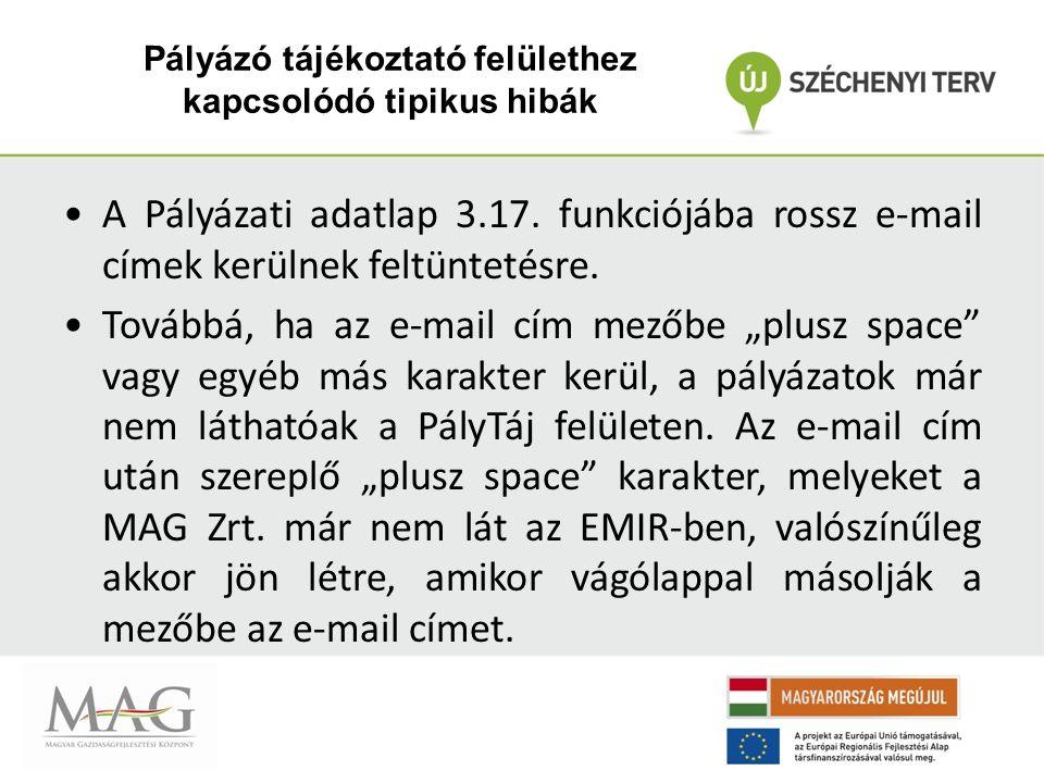 Pályázó tájékoztató felülethez kapcsolódó tipikus hibák A Pályázati adatlap 3.17.
