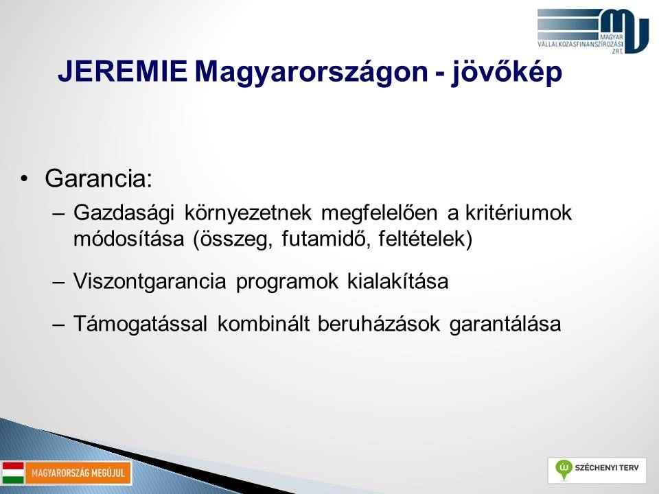 Garancia: –Gazdasági környezetnek megfelelően a kritériumok módosítása (összeg, futamidő, feltételek) –Viszontgarancia programok kialakítása –Támogatá