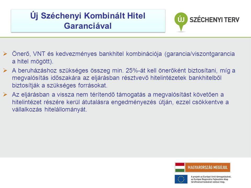  Önerő, VNT és kedvezményes bankhitel kombinációja (garancia/viszontgarancia a hitel mögött).