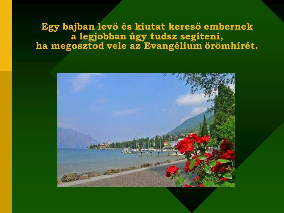 Az Evangélium jelentése: örömhír! Azt jelenti, hogy nem kell egyetlen embernek sem elnyomottnak, betegnek, szegénynek lennie, mert Krisztus minden áto