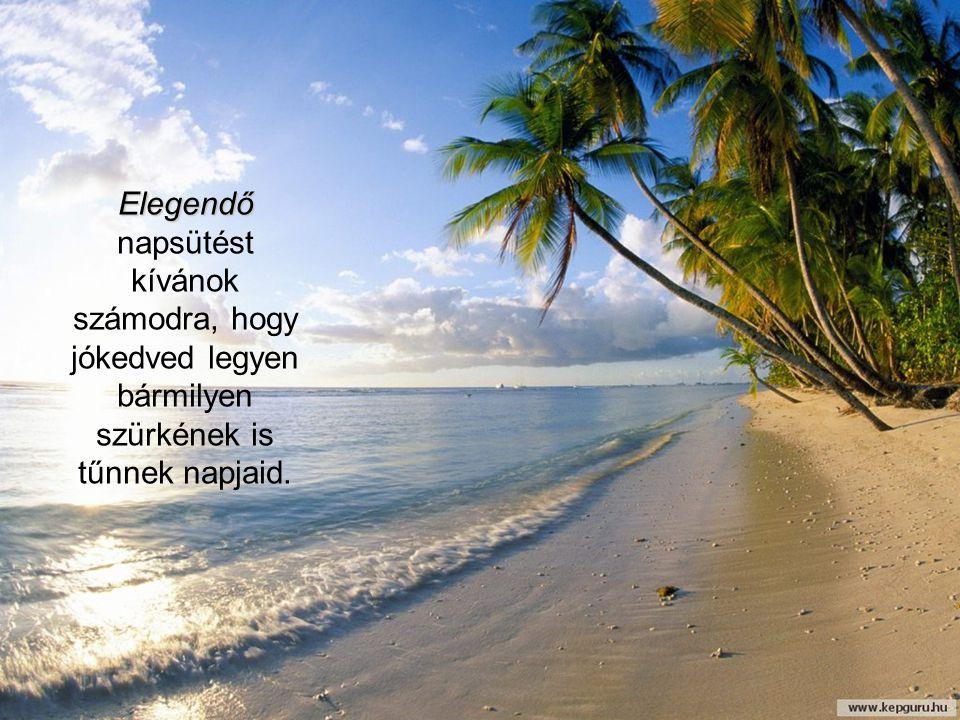 Elegendő Elegendő napsütést kívánok számodra, hogy jókedved legyen bármilyen szürkének is tűnnek napjaid.