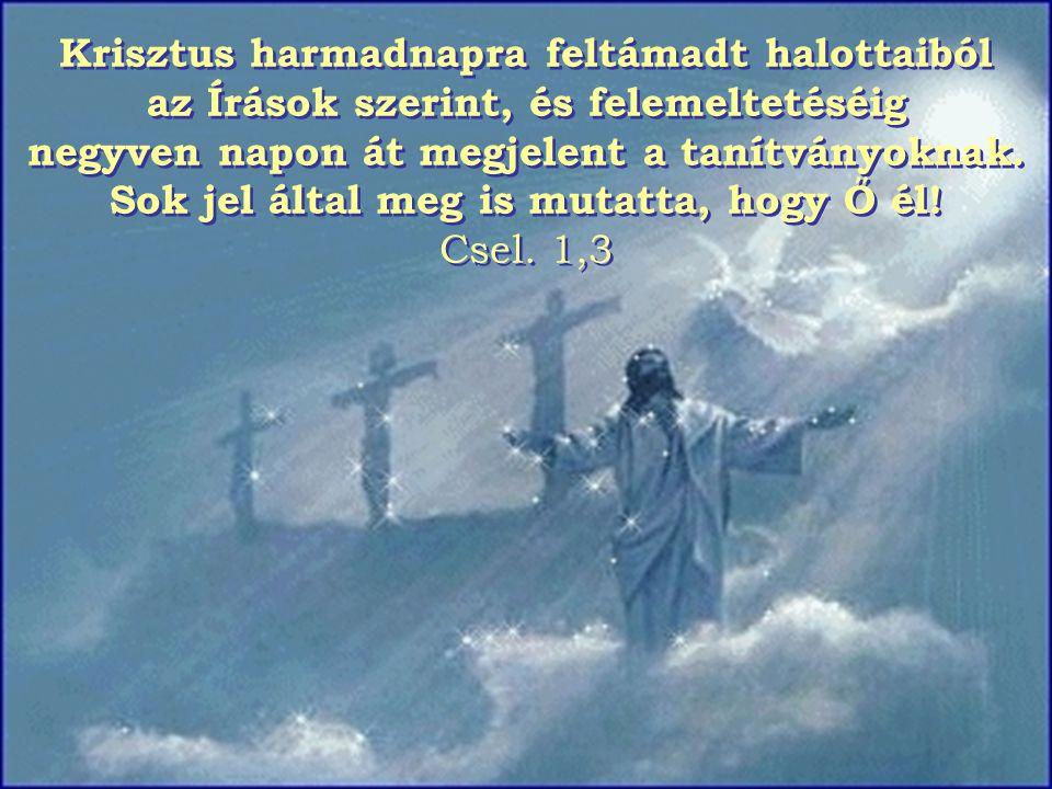 MENNYBEMENETEL A húsvét utáni negyvenedik napon ünnepeljük Krisztus felemeltetését.
