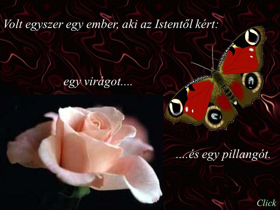 Volt egyszer egy ember, aki az Istentől kért: egy virágot........és egy pillangót. Click