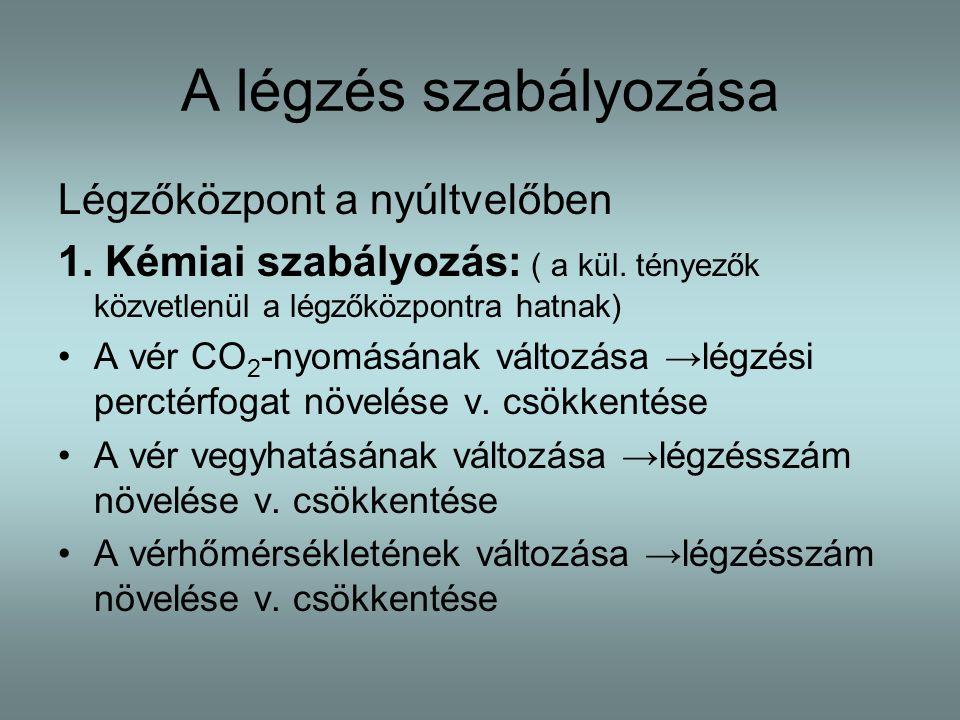 A légzés szabályozása Légzőközpont a nyúltvelőben 1.
