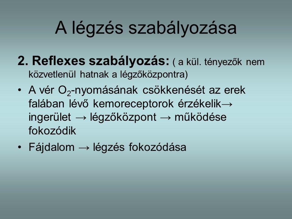 A légzés szabályozása 2.Reflexes szabályozás: ( a kül.