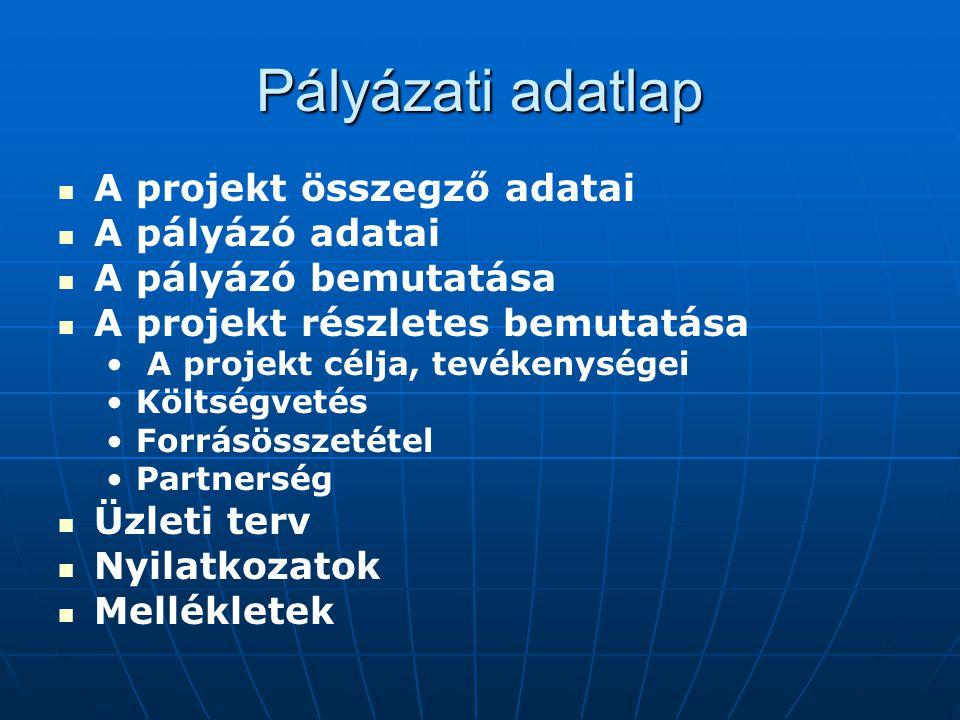 Pályázati adatlap A projekt összegző adatai A pályázó adatai A pályázó bemutatása A projekt részletes bemutatása A projekt célja, tevékenységei Költsé