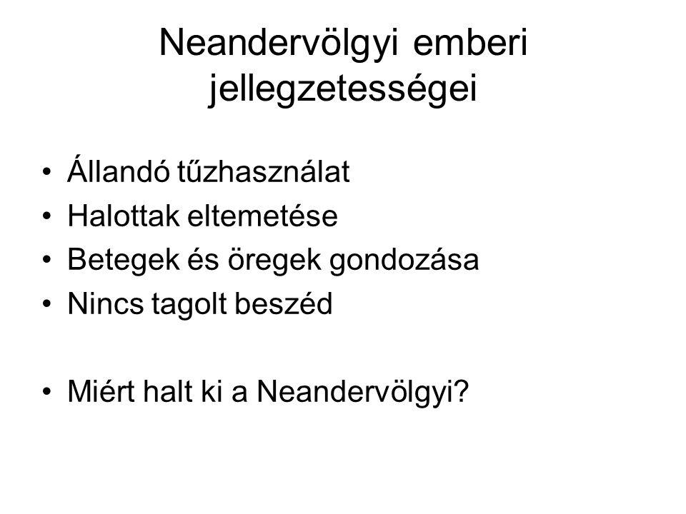 Neandervölgyi emberi jellegzetességei Állandó tűzhasználat Halottak eltemetése Betegek és öregek gondozása Nincs tagolt beszéd Miért halt ki a Neandervölgyi?