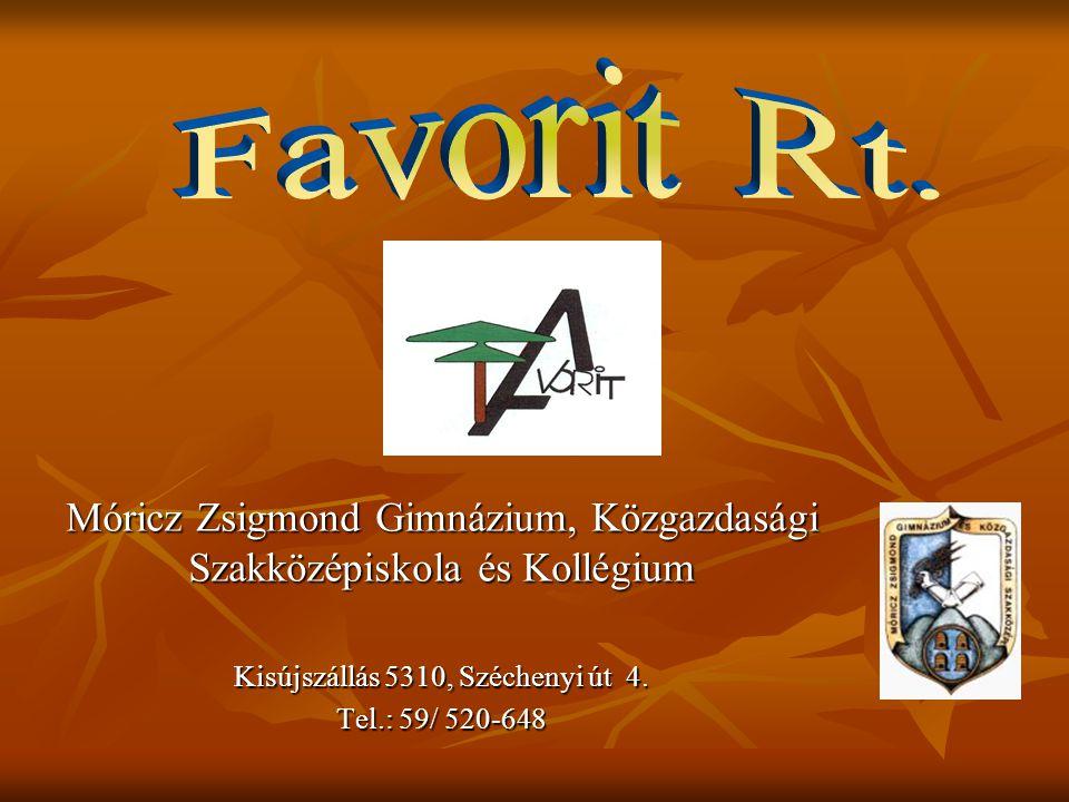 2007 szeptemberében alakult meg a Favorit Rt.iskolánkban.